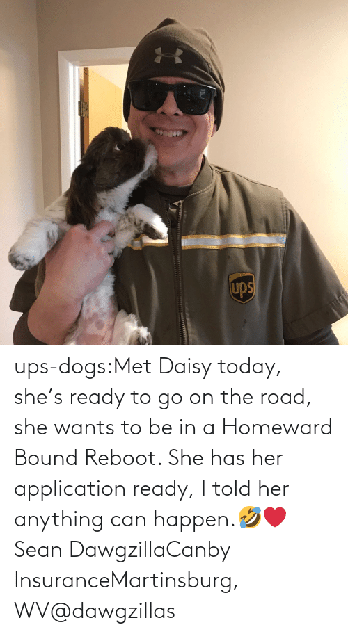 shes: ups-dogs:Met Daisy today, she's ready to go on the road, she wants to be in a Homeward Bound Reboot. She has her application ready, I told her anything can happen.🤣❤️ Sean DawgzillaCanby InsuranceMartinsburg, WV@dawgzillas