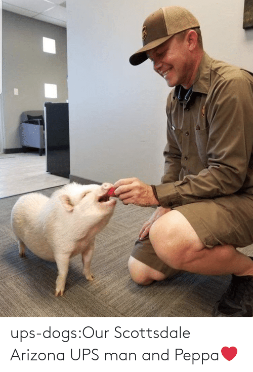 Blank: ups-dogs:Our Scottsdale Arizona UPS man and Peppa❤️