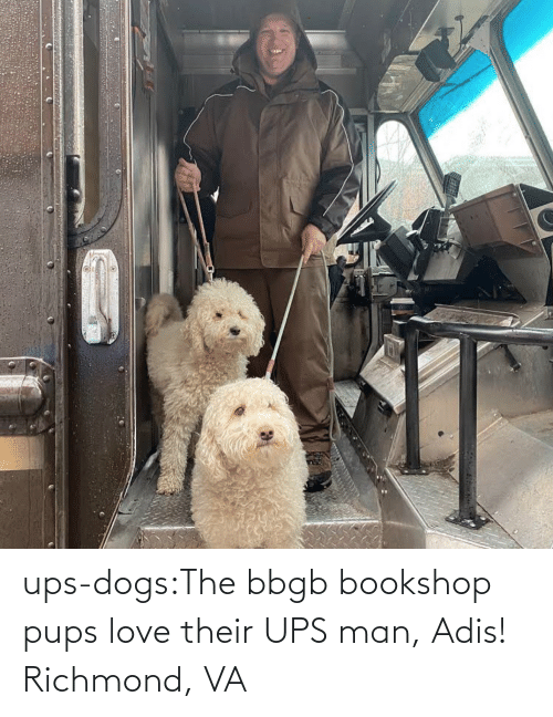 Blank: ups-dogs:The bbgb bookshop pups love their UPS man, Adis! Richmond, VA