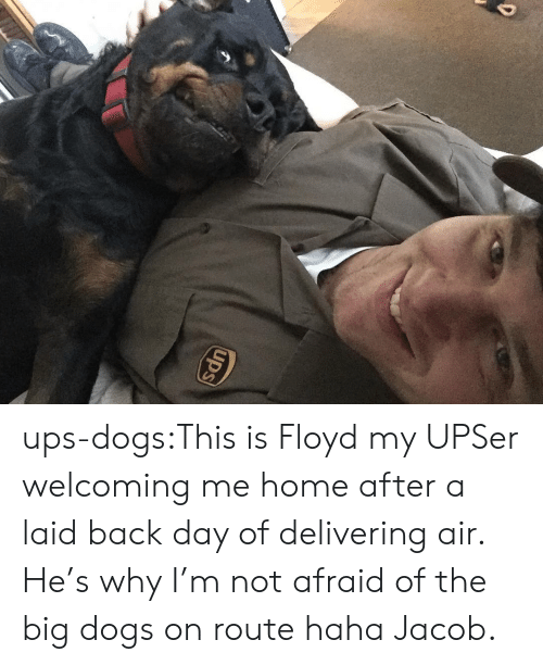 Dogs, Target, and Tumblr: ups-dogs:This is Floyd my UPSer welcoming me home after a laid back day of delivering air. He's why I'm not afraid of the big dogs on route haha Jacob.