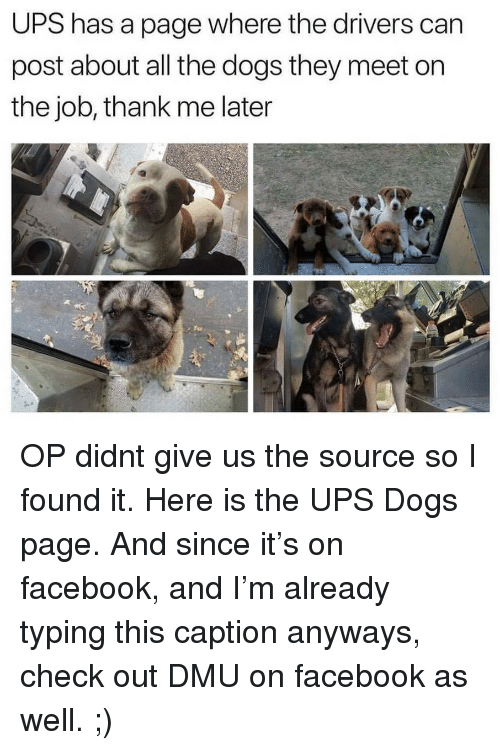 Dogs, Facebook, and Target: UPS has a page where the drivers can  post about all the dogs they meet on  the job, thank me later OP didnt give us the source so I found it. Here is the UPS Dogs page. And since it's on facebook, and I'm already typing this caption anyways, check out DMU on facebook as well. ;)