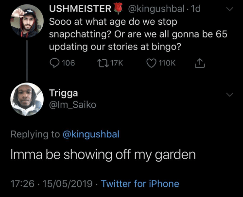 Iphone, Twitter, and Bingo: USHMEISTER@kingushbal 1d  Sooo at what age do we stop  snapchatting? Or are we all gonna be 65  updating our stories at bingo?  110K  Trigga  @lm_Saiko  Replying to @kingushbal  Imma be showing off my garden  17:26 15/05/2019 Twitter for iPhone