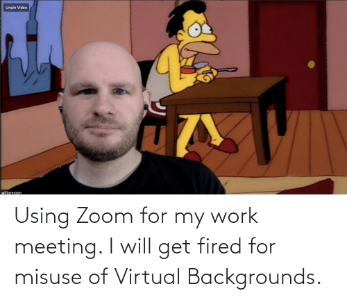 Work Meeting: Using Zoom for my work meeting. I will get fired for misuse of Virtual Backgrounds.