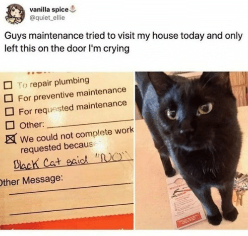 """Crying, My House, and Work: vanilla spice  @quiet ellie  Guys maintenance tried to visit my house today and only  left this on the door I'm crying  To repair plumbing  For preventive maintenance  For requested maintenance  Other:  We could not complete work  requested because  Dlach Cat oaiod """"NO  Other Message:  Matn"""