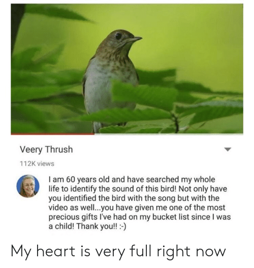 Bucket List, Life, and Precious: Veery Thrush  112K views  I am 60 years old and have searched my whole  life to identify the sound of this bird! Not only have  you identified the bird with the song but with the  video as well..you have given me one of the most  precious gifts I've had on my bucket list since I was  a child! Thank you!!- My heart is very full right now