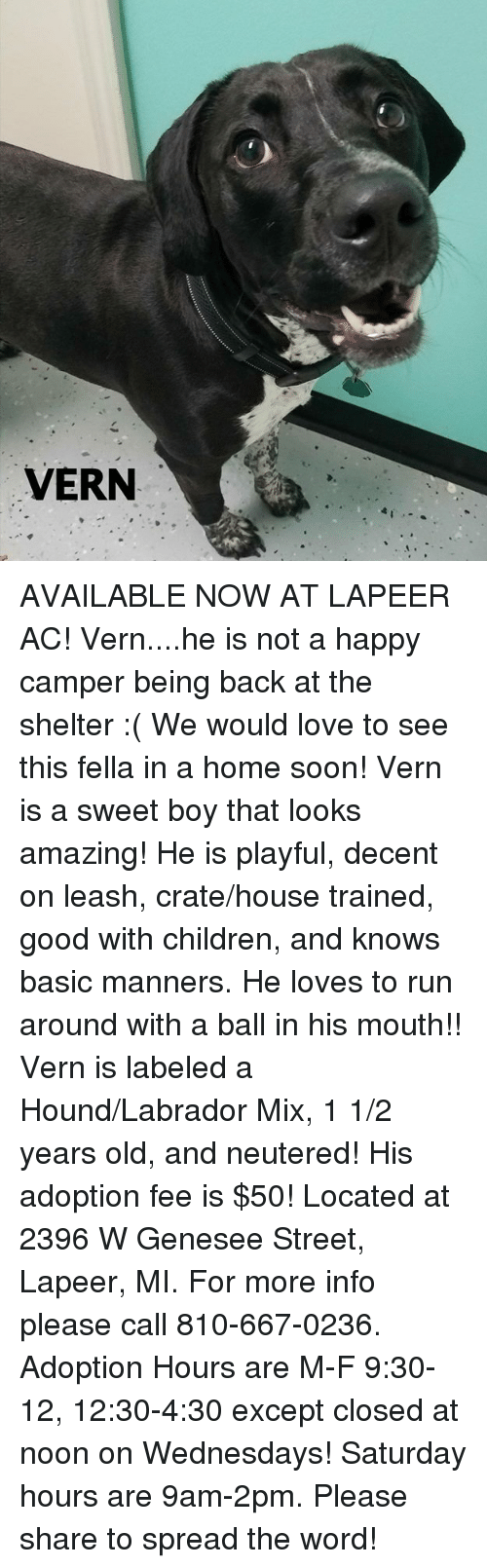 Children Love And Memes VERN AVAILABLE NOW AT LAPEER AC Vern