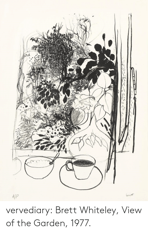 View: vervediary: Brett Whiteley, View of the Garden, 1977.