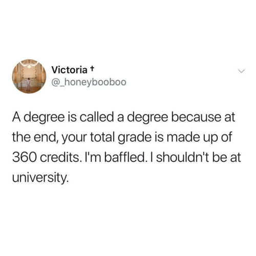 Made Up: Victoria t  @_honeyboobo0  A degree is called a degree because at  the end, your total grade is made up of  360 credits. I'm baffled. I shouldn't be at  university.