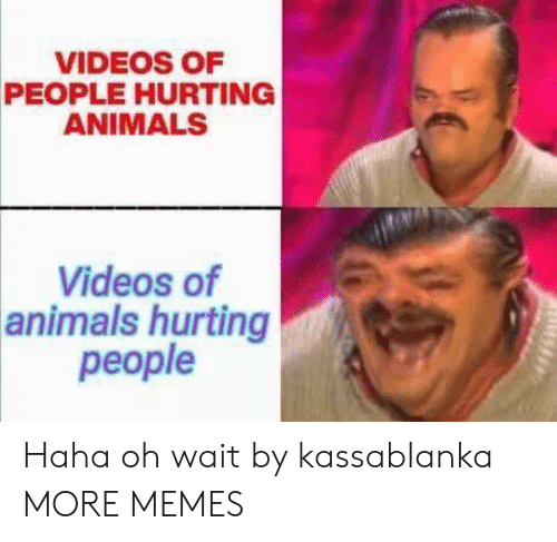 Animals, Dank, and Memes: VIDEOS OF  PEOPLE HURTING  ANIMALS  Videos of  animals hurting  people Haha oh wait by kassablanka MORE MEMES
