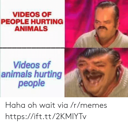 Animals, Memes, and Videos: VIDEOS OF  PEOPLE HURTING  ANIMALS  Videos of  animals hurting  people Haha oh wait via /r/memes https://ift.tt/2KMIYTv