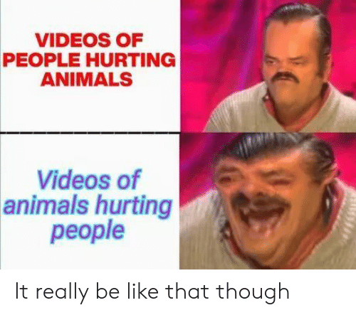 Animals, Be Like, and Videos: VIDEOS OF  PEOPLE HURTING  ANIMALS  Videos of  animals hurting  people It really be like that though