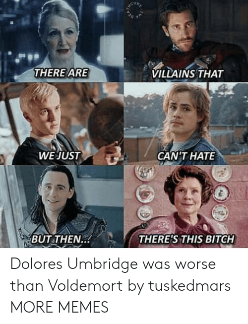 Bitch, Dank, and Dolores Umbridge: VILLAINS THAT  THERE ARE  WE JUST  GANTHAΤΕ  THERE'S THIS BITCH  BUT THEN.. Dolores Umbridge was worse than Voldemort by tuskedmars MORE MEMES