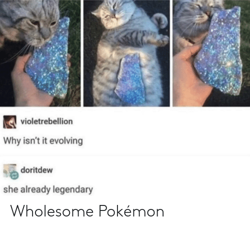 evolving: violetrebellion  Why isn't it evolving  doritdew  she already legendary Wholesome Pokémon