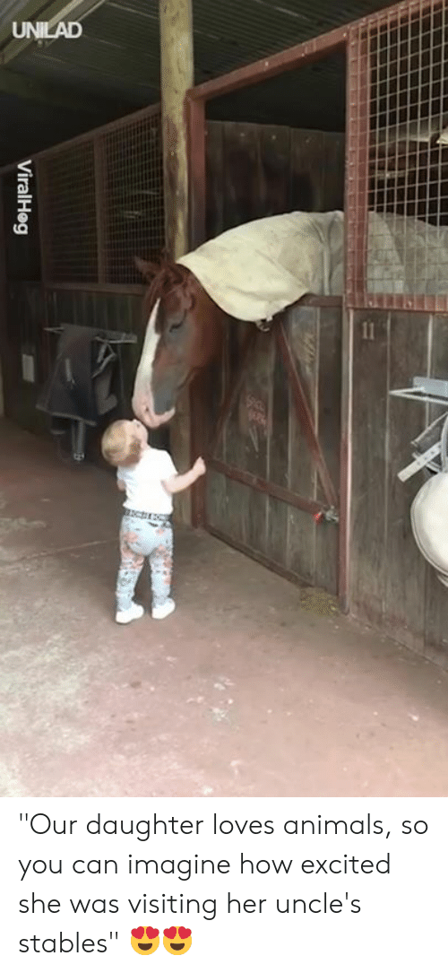 """Animals, Dank, and 🤖: ViralHeg """"Our daughter loves animals, so you can imagine how excited she was visiting her uncle's stables"""" 😍😍"""