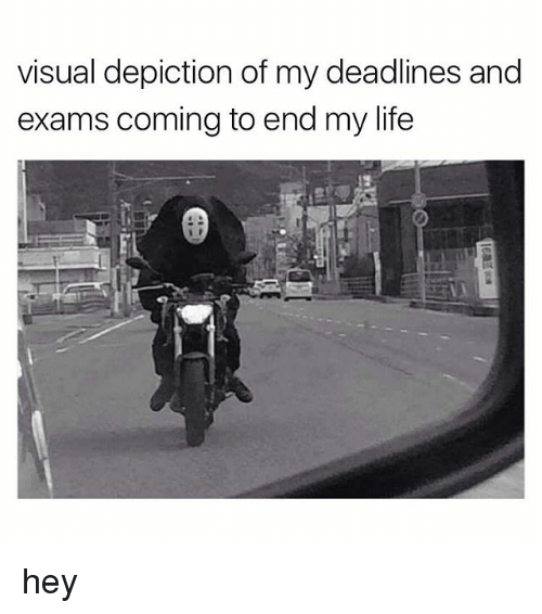 Life, Visual, and Hey: visual depiction of my deadlines and  exams coming to end my life  惣 hey