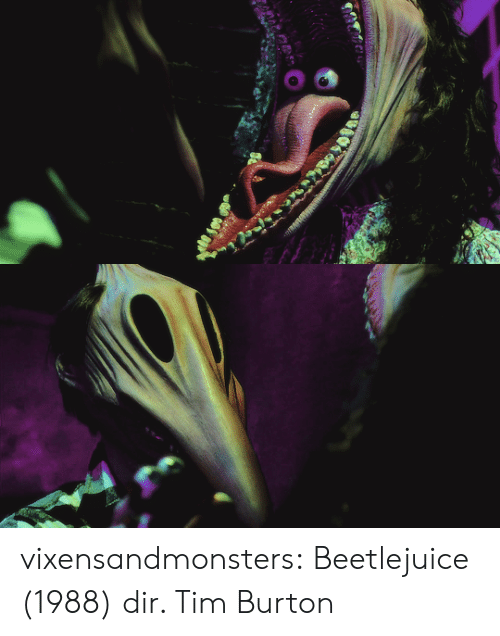 Beetlejuice: vixensandmonsters:  Beetlejuice (1988) dir. Tim Burton