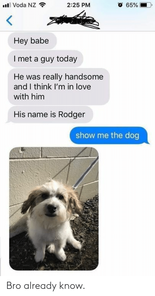 Dank, Love, and Today: Voda NZ  2:25 PM  65%  Hey babe  I met a guy today  He was really handsome  and I think I'm in love  with him  His name is Rodger  show me the dog Bro already know.
