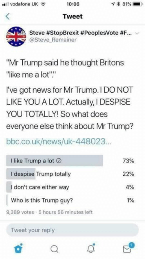"Memes, News, and Trump: vodafone UK  10:06  * 81%  Tweet  Steve #StopBrexit #PeoplesVote #F-.  @Steve Remainer  ""Mr Trump said he thought Britons  ike me a lot"".""  I've got news for Mr Trump. I DO NOT  LIKE YOU A LOT. Actually, I DESPISE  YOU TOTALLY! So what does  everyone else think about Mr Trump?  bbc.co.uk/news/uk-448023  I like Trump a lot  I despise Trump totally  I don't care either way  Who is this Trump guy?  73%  22%  4%  1%  9,389 votes 5 hours 56 minutes left  Tweet your reply"