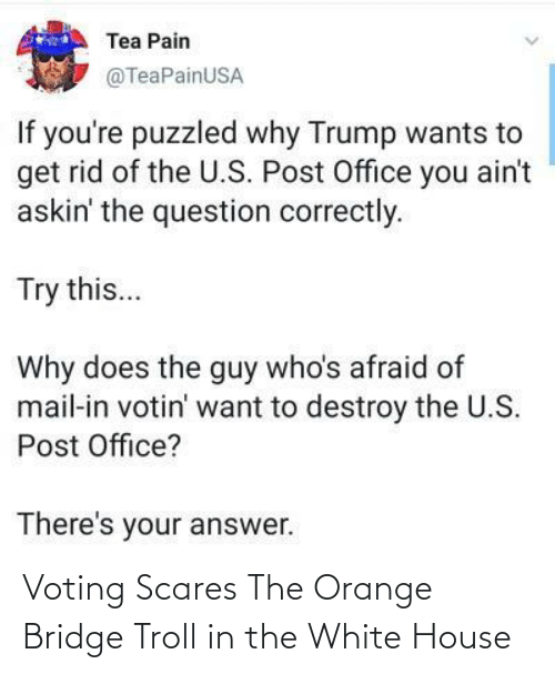 Troll: Voting Scares The Orange Bridge Troll in the White House