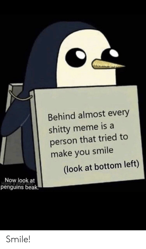 Meme, Penguins, and Smile: Voure gay  Behind almost every  shitty meme is a  person that tried to  make you smile  (look at bottom left)  Now look at  penguins beak. Smile!