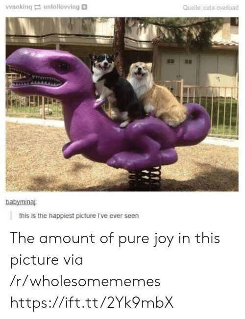 Cute, Joy, and Via: Vwanking unfollovving  Quelle:cute-overload  babyminaj  this is the happiest picture I've ever seen The amount of pure joy in this picture via /r/wholesomememes https://ift.tt/2Yk9mbX