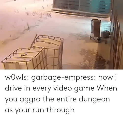 dungeon: w0wls:  garbage-empress: how i drive in every video game  When you aggro the entire dungeon as your run through