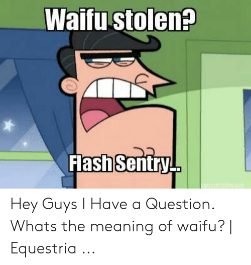Waifu Meaning: Waifu stolen?  Flash Sentry Hey Guys I Have a Question. Whats the meaning of waifu? | Equestria ...