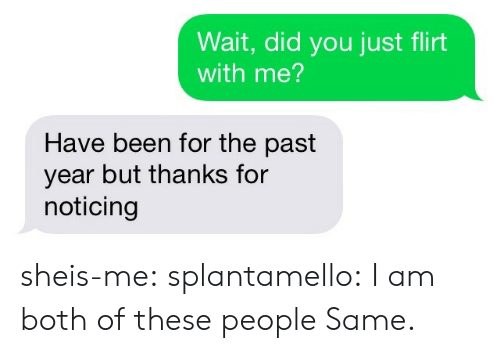 Tumblr, Blog, and Http: Wait, did you just flirt  with me?  Have been for the past  year but thanks for  noticing sheis-me:  splantamello: I am both of these people Same.