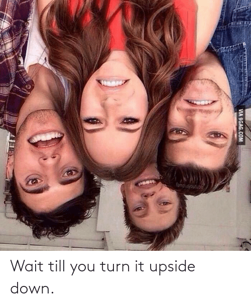 Wait Till: Wait till you turn it upside down.