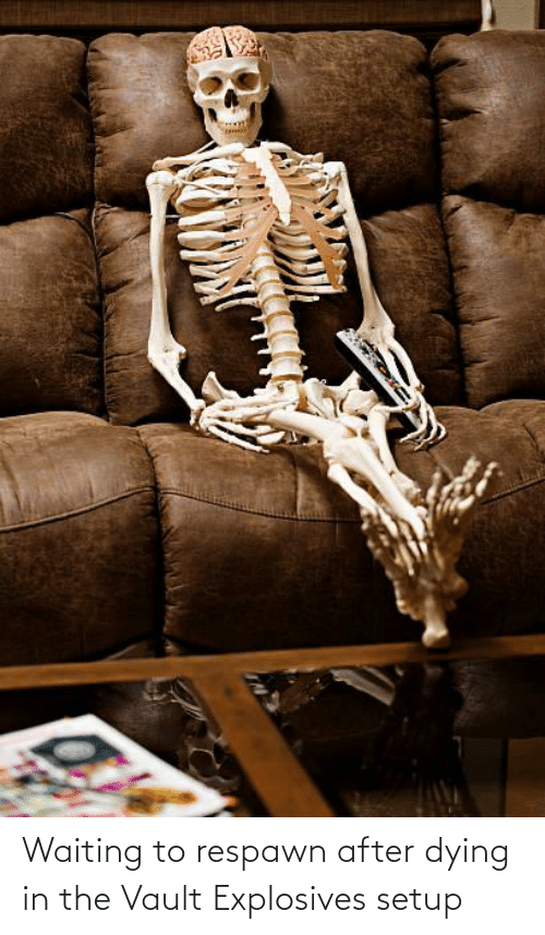 the vault: Waiting to respawn after dying in the Vault Explosives setup
