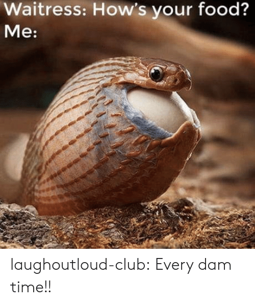 Club, Food, and Tumblr: Waitress: How's your food?  Me: laughoutloud-club:  Every dam time!!