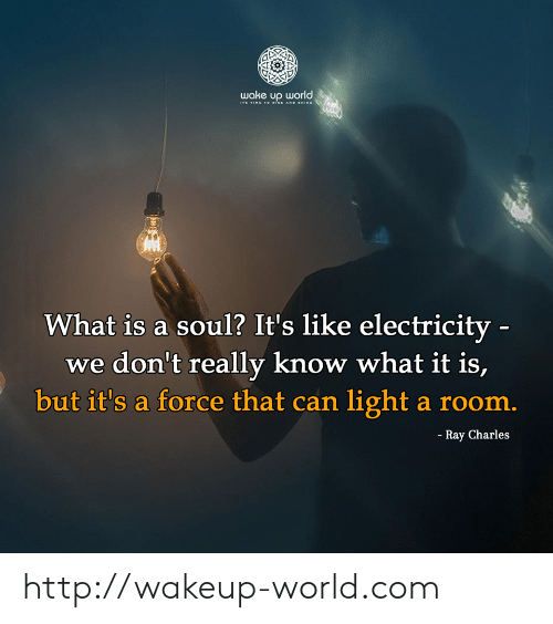 what is a: wake υρ orld ,  ITs TIME T O iSE AND HINE  What is a soul? It's like electricity -  we don't really know what it is,  but it's a force that can light a room.  - Ray Charles http://wakeup-world.com