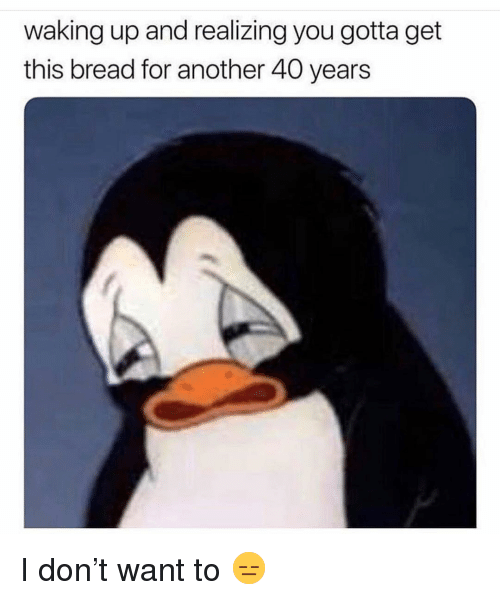 Funny, Another, and Bread: waking up and realizing you gotta get  this bread for another 40 years I don't want to 😑