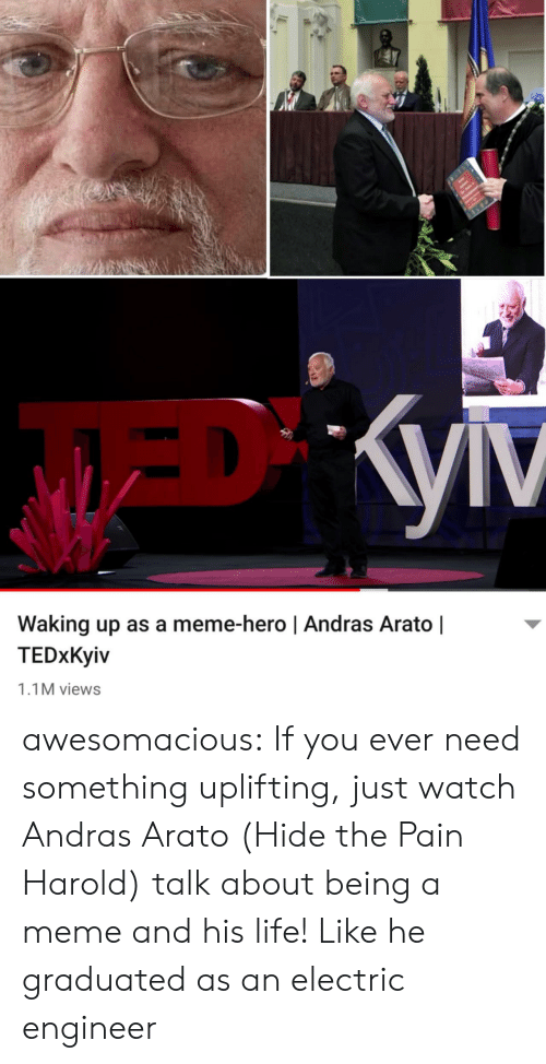 waking up: Waking up as a meme-hero | Andras Arato |  TEDxKyiv  1.1M views awesomacious:  If you ever need something uplifting, just watch Andras Arato (Hide the Pain Harold) talk about being a meme and his life! Like he graduated as an electric engineer