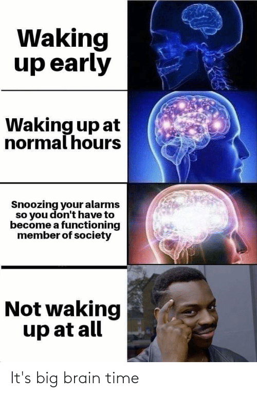 Reddit, Brain, and Time: Waking  up early  Waking up at  normal hours  Snoozing your alarms  so you don't have to  become a functioning  member of society  Not waking  up at all It's big brain time
