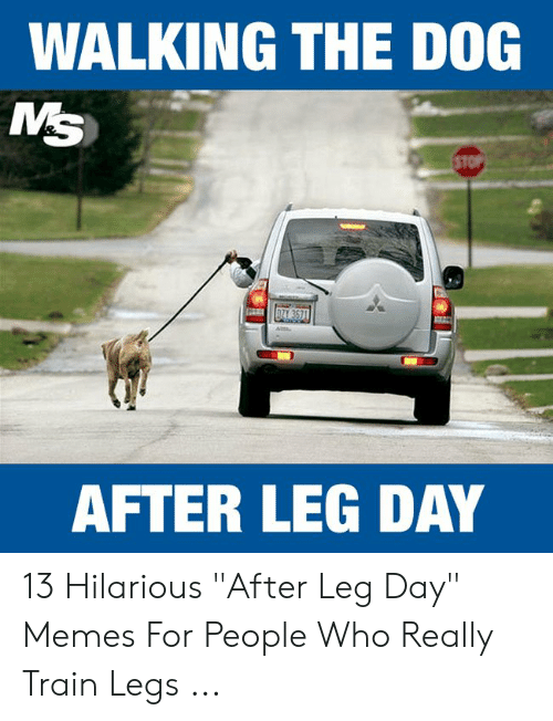 "Leg Day Meme: WALKING THE DOG  MS  STOP  AFTER LEG DAY 13 Hilarious ""After Leg Day"" Memes For People Who Really Train Legs ..."