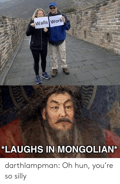 Laughs In: Walls Work  *LAUGHS IN MONGOLIAN darthlampman:  Oh hun, you're so silly