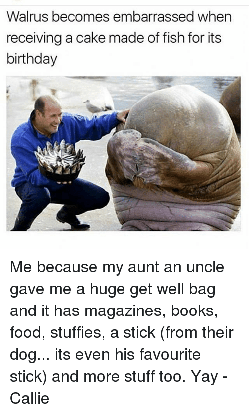 Stuffies: Walrus becomes embarrassed when  receiving a cake made of fish for its  birthday Me because my aunt an uncle gave me a huge get well bag and it has magazines, books, food, stuffies, a stick (from their dog... its even his favourite stick) and more stuff too. Yay -Callie