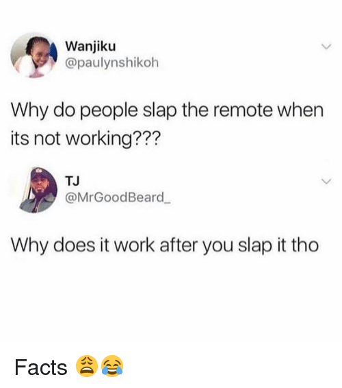 Facts, Memes, and Work: Wanjiku  @paulynshikoh  Why do people slap the remote when  its not working???  TJ  @MrGoodBeard  Why does it work after you slap it tho Facts 😩😂