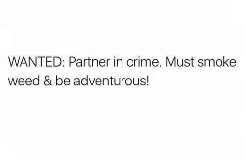 Crime, Memes, and Weed: WANTED: Partner in crime. Must smoke  weed & be adventurous!