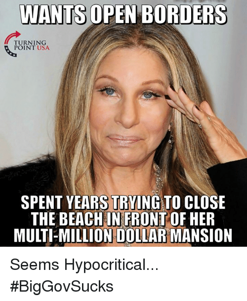 Memes, Beach, and 🤖: WANTS OPEN BORDERS  TURNING  POINT USA  SPENT YEARS TRYING TO CLOSE  THE BEACH IN FRONT OF HER  MULTI-MILLION DOLLAR MANSION Seems Hypocritical... #BigGovSucks