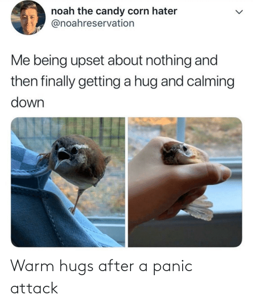 warm: Warm hugs after a panic attack