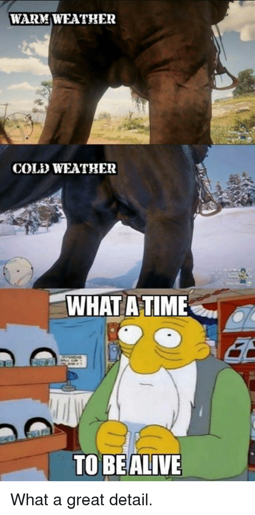 Dank, Weather, and Cold: WARM WEATHER  COLD WEATHER  WHAT ATIME  TO BEALIVE What a great detail.
