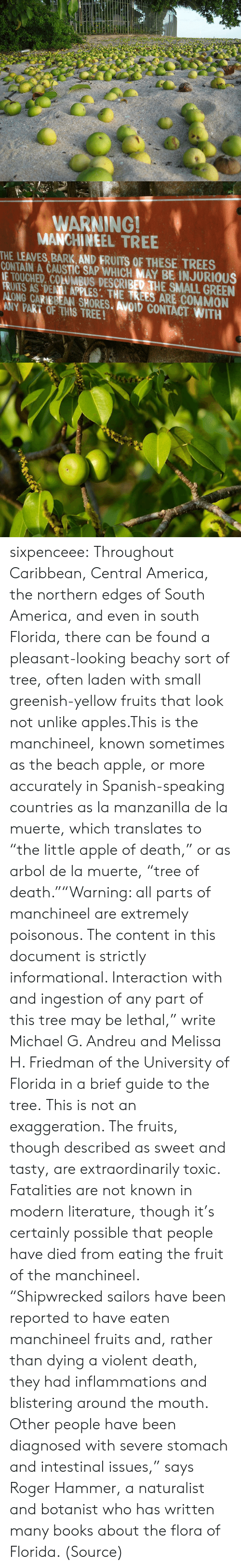 """Inhale The: WARNING!  MANCHINEEL TREE  THE LEAVES, BARK AND FRUITS OF THESE TREES  CONTAIN A CAUSTIC SAP WHICH MAY BE INJURIOUS  IE TOUCHED. COLUMBUS DESCRIBED THE SMALL GREEN  FRIATS AS DENII APPLES: THE TREES ARE COMMON  ALONG CARIBBEAN SHORES. AVOID CONTACT WITH  ANY PART OF THIS TREE! sixpenceee:  Throughout Caribbean, Central America, the northern edges of South America, and even in south Florida, there can be found a pleasant-looking beachy sort of tree, often laden with small greenish-yellow fruits that look not unlike apples.This is the manchineel, known sometimes as the beach apple, or more accurately in Spanish-speaking countries as la manzanilla de la muerte, which translates to """"the little apple of death,"""" or as arbol de la muerte, """"tree of death.""""""""Warning: all parts of manchineel are extremely poisonous. The content in this document is strictly informational. Interaction with and ingestion of any part of this tree may be lethal,"""" write Michael G. Andreu and Melissa H. Friedman of the University of Florida in a brief guide to the tree.This is not an exaggeration. The fruits, though described as sweet and tasty, are extraordinarily toxic. Fatalities are not known in modern literature, though it's certainly possible that people have died from eating the fruit of the manchineel. """"Shipwrecked sailors have been reported to have eaten manchineel fruits and, rather than dying a violent death, they had inflammations and blistering around the mouth. Other people have been diagnosed with severe stomach and intestinal issues,"""" says Roger Hammer, a naturalist and botanist who has written many books about the flora of Florida. (Source)"""