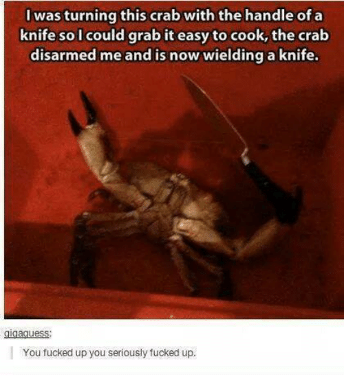 Fucking, Memes, and Ups: was turning this crab with the handle of a  knife so I could grab it easy to cook, the crab  disarmed me and is now wielding a knife.  You fucked up you seriously fucked up