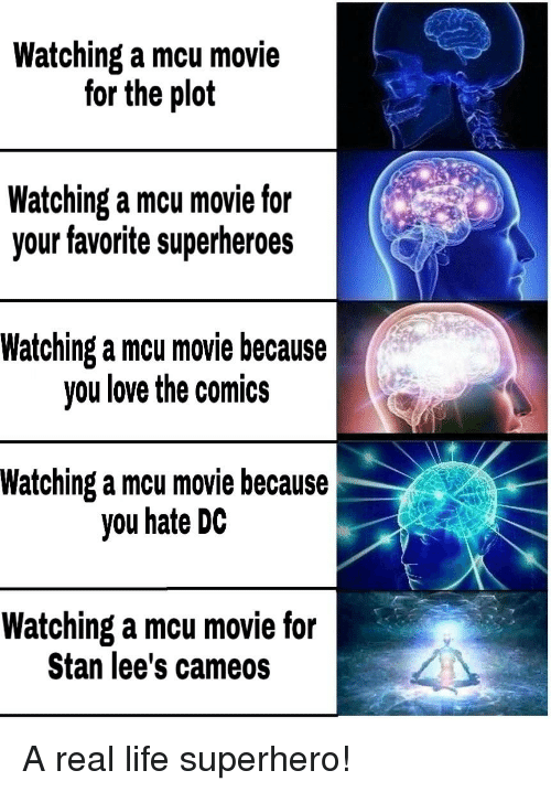 Life, Love, and Reddit: Watching a mcu movie  for the plot  Watching a mcu movie for  your favorite superheroes  Watching a mcu movie because  you love the comics  Watching a mcu movie because  you hate DC  Watching a mcu movie for  Stan lee's cameos