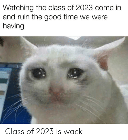 Good, Time, and Wack: Watching the class of 2023 come in  and ruin the good time we were  having Class of 2023 is wack