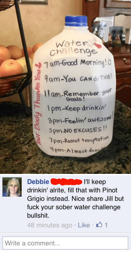 Good Morning, Fuck, and Good: water  challenge  7 am-Good  Morning!  9am-You CAN do THS  ll r  am-Remember yolk  Grools!  pm-Keep drinkin  3pm-Feelin' awesome  Spm-No EXCUSES!  7Pm-Resist temptation  ?m-Almost do   DebbieI'll keep  drinkin' alrite, fill that with Pinot  Grigio instead. Nice share Jill but  fuck your sober water challenge  bullshit.  48 minutes ago Like 1  Write a comment