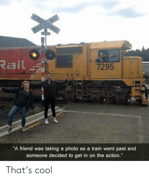"""Past: WAY  CROSSING  RAIL  Rail  7295  """"A friend was taking a photo as a train went past and  someone decided to get in on the action."""" That's cool"""