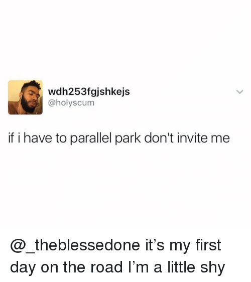 Dank Memes, On the Road, and The Road: wdh253fgjshkejs  @holyscum  if i have to parallel park don't invite me @_theblessedone it's my first day on the road I'm a little shy